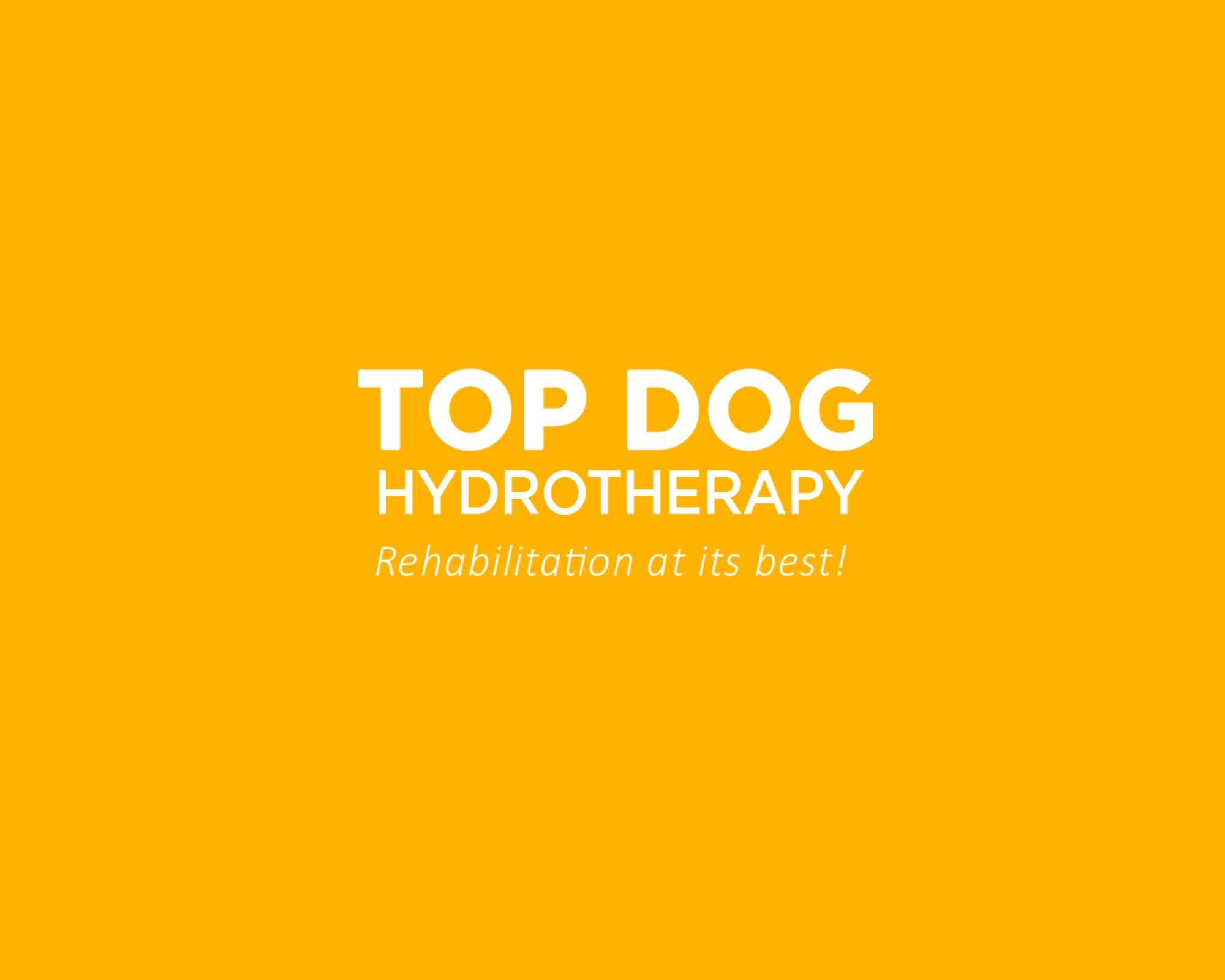top dog hydrotherapy Logo